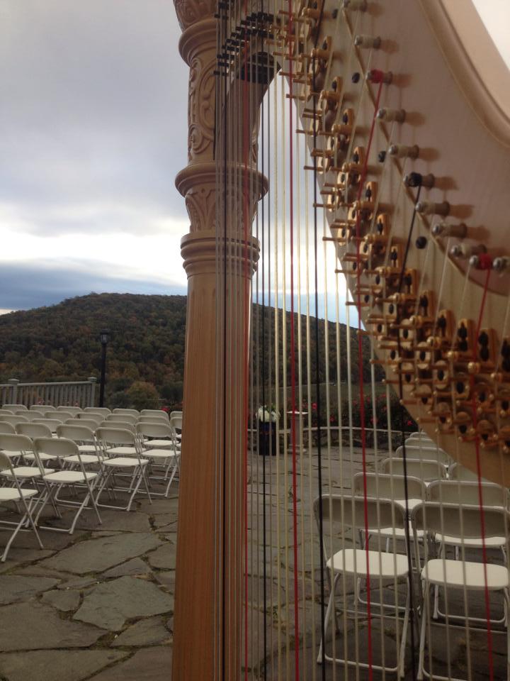 harp10182014