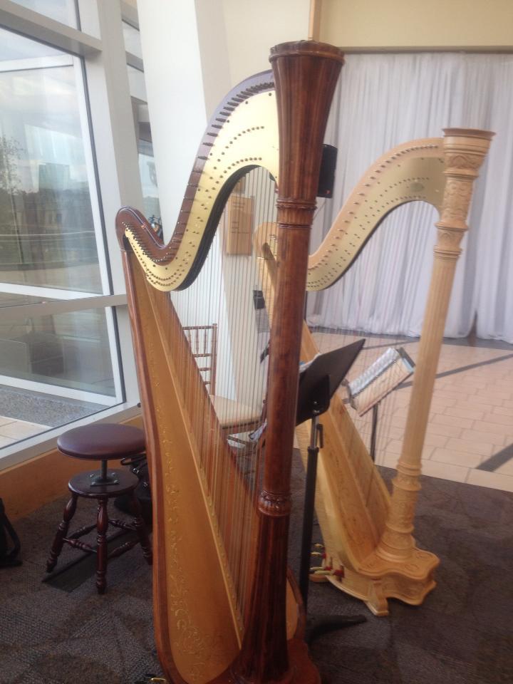 harps11022013