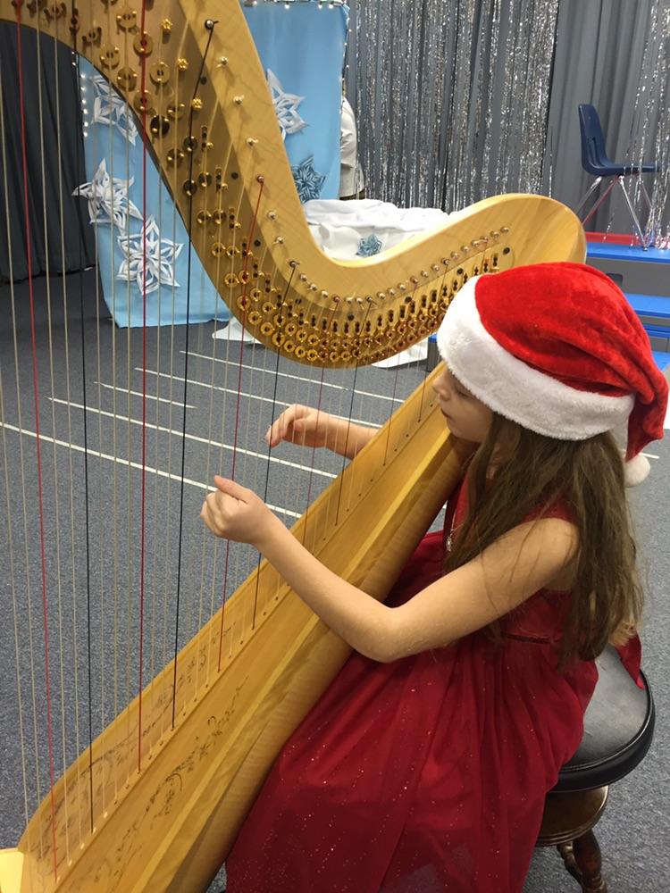 Private Instruction Capitol Harpist